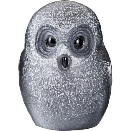 Owlet black