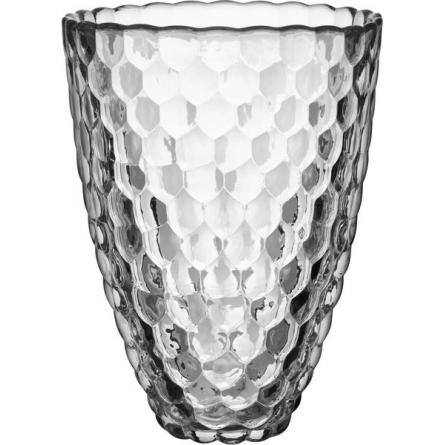 Raspberry Vas H 20cm