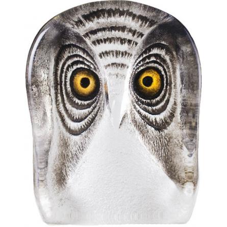 Owl, Smal