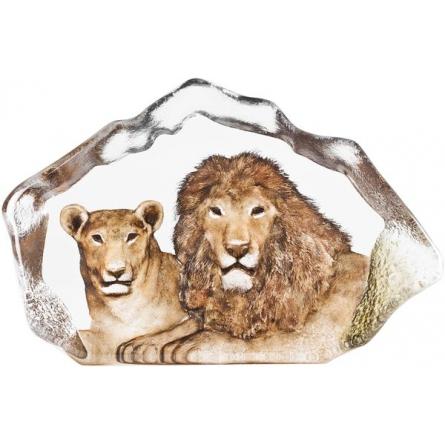 The Big Five lion
