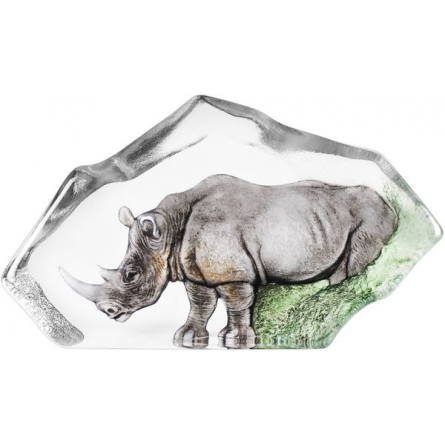 The Big Five Rhino