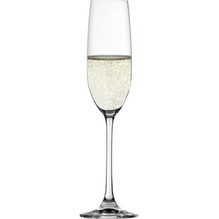 Salute Champagne 21cl 4-Pack