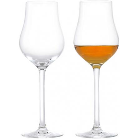Premium Liquor glass 23cl 2-pack